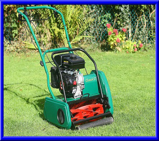link to lawnmower repair and service